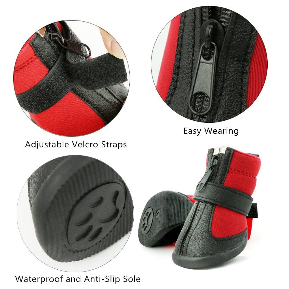 Grand Line Botas de Perro Impermeable Tama/ño XS Pata Protector con Resistente al Desgaste Suela Antideslizante Conjunto de 4