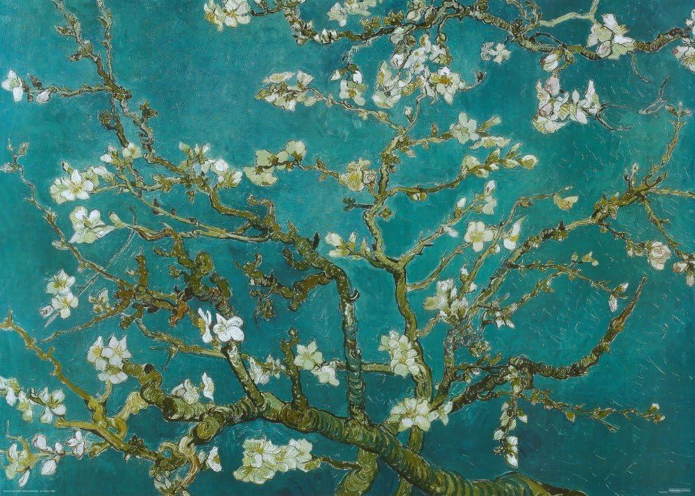 40x30cm Vincent Van Gogh Blühende Mandelzweige Poster Leinwand Bild #120695