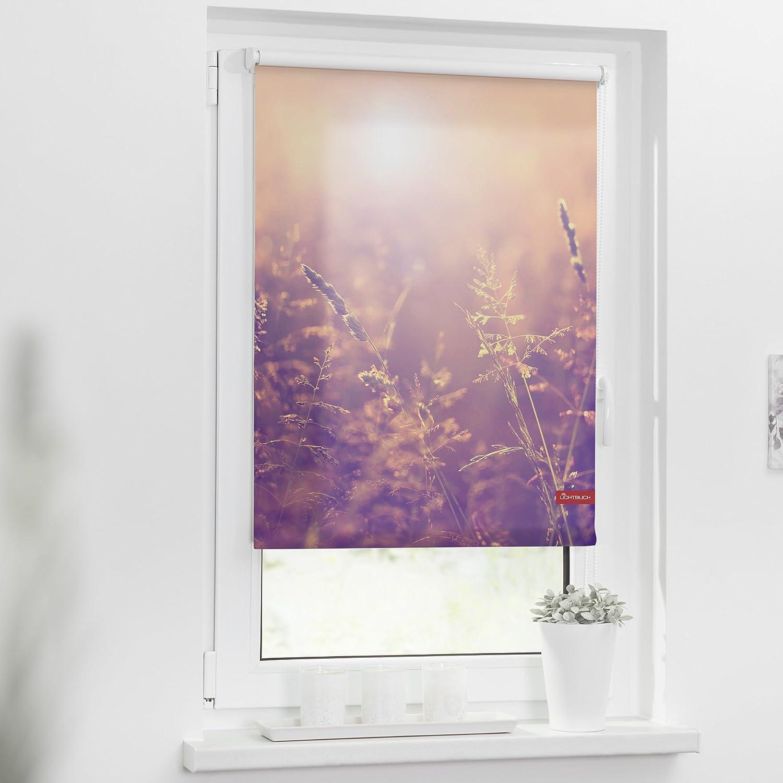 Lichtblick KRT.080.150.352 Rollo Klemmfix, Klemmfix, Klemmfix, ohne Bohren, Blickdicht, Sommerabend - Orange 80 x 150 cm (B x L) B06Y5HK2YG Seitenzug- & Springrollos 4e681c