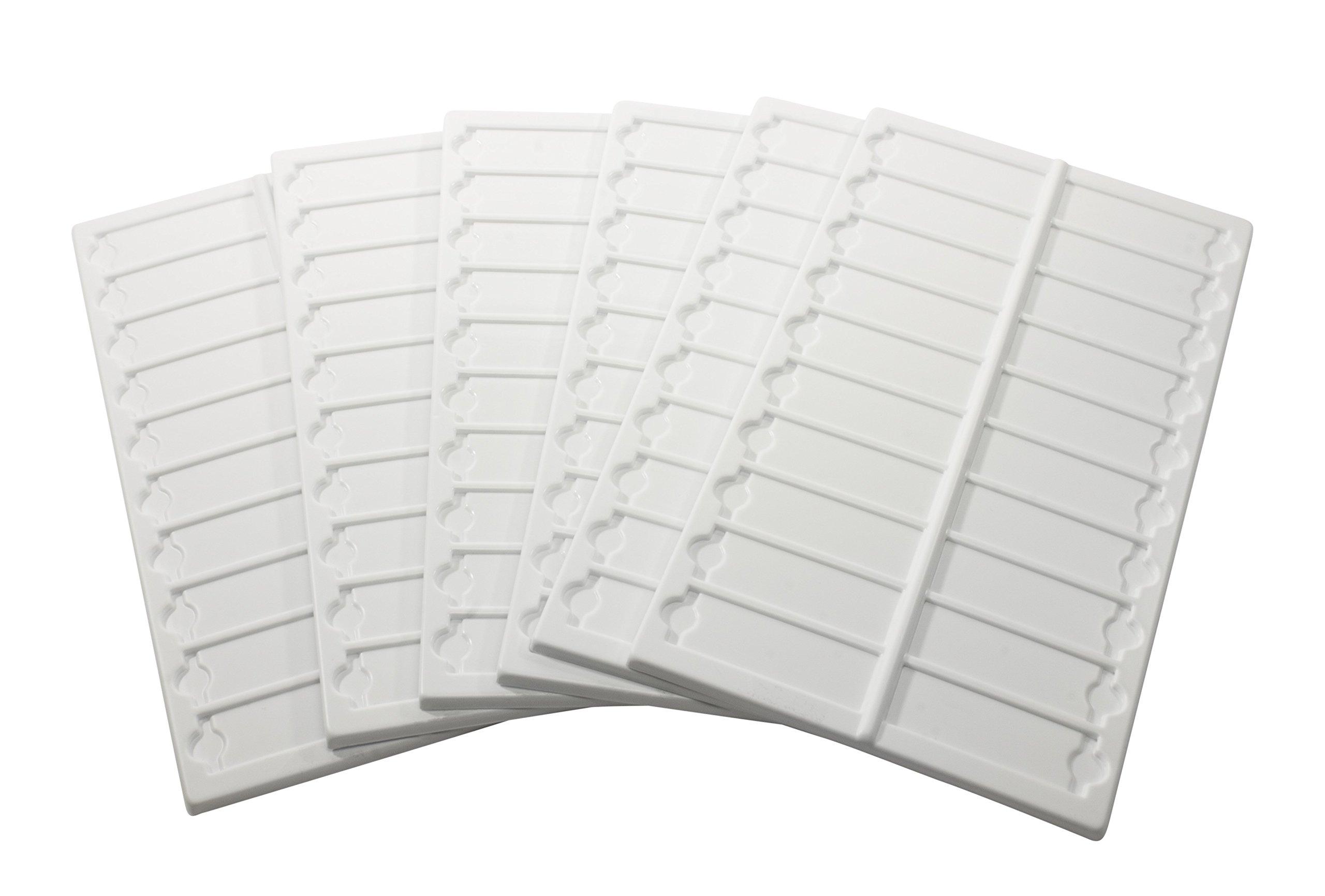 Bel-Art Microscope Slide Tray; 20 Capacity, 13½ x 6 ⅝ in, Plastic (Pack of 6) (H44581-0000)