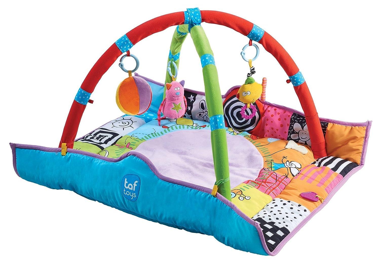 【送料関税無料】 Taf Toys by Newborn Gym Toys by Taf B003H6ZQJE Toys B003H6ZQJE, 漆器 山田平安堂:3c6cfa3a --- martinemoeykens.com