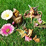 Fairy Garden Miniature Friends Fun Set of 11 pcs, Premium Quality Hand Painted Kit For Outdoor, House, Flat Decor, By Mood Lab