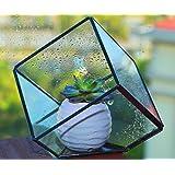 Modern Artistic Clear Glass Cube Box Glass Plant Terrarium / Decorative Votive Candle, Tea Light Holder