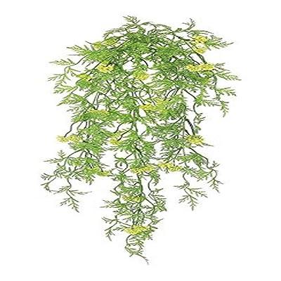 Ella and Lulu FL3086-GY Seeding Mini Lace Fern Hanging Vine Greenery, 33-in, Greem : Garden & Outdoor