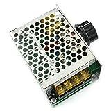 DZS Elec AC 220V 4000W Voltage Regulator Dimmer Motor Speed Controller 10V-220V Large Power AC SCR Voltage Regulation Dimming Tempering Power Monitor Regulator Module
