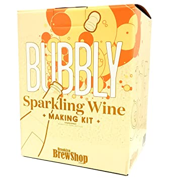 37b7c3b4 Brooklyn Brew Shop Sparkling Wine Making Kit: Bubbly Starter Set with  Reusable Glass Fermenter,