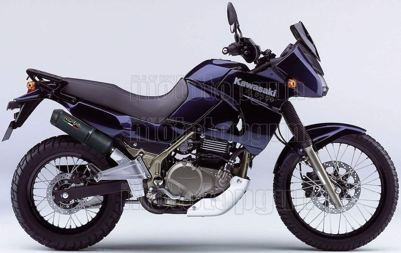 GPR Tubo de Escape Hom GHISA Kawasaki KLE 500 1991 91 1992 92 1993 93 1994 94 1995 95