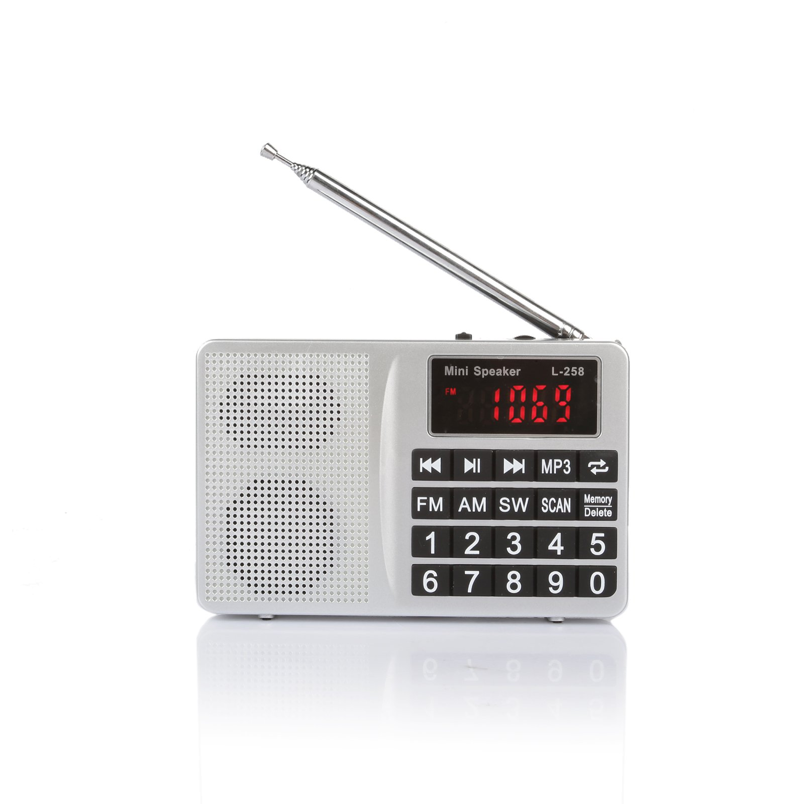 Radioddity RF21 FM AM SW World Band Handheld Digital Radio Shortwave Multiband Receiver MP3 Player, With Micro TF Card USB Port, Rechargeable 1000mAh Battery Silver