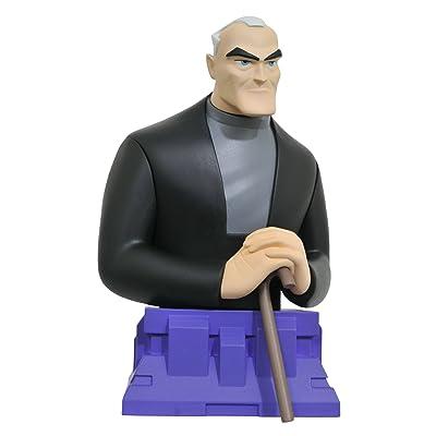 DIAMOND SELECT TOYS Batman Beyond: Bruce Wayne Resin Figure Bust: Diamond Select: Toys & Games