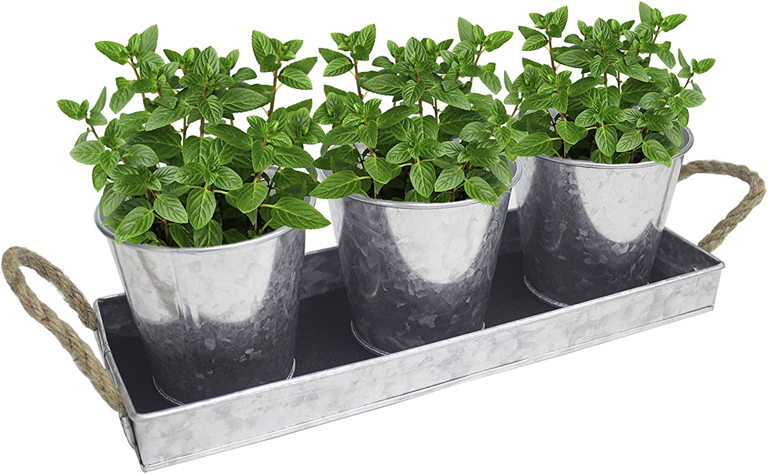 EITMOW S/3 Galvanized Herb Flower Pots with Rectangular Tray and Capillary Mat Metal Vintage Succulent Herb Planter Pots Tray Caddy Suitable for Kitchen windowsill Indoor or Outdoor (2 Sets Pack)