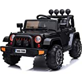 1646b2b03e9 Amazon.com  Store - 383 Hyper HPR-1000 12 Volt Ride-On Toy. (Pack of ...