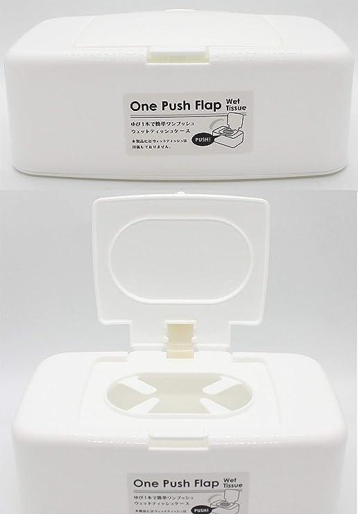 HOMETAK - Caja de Almacenamiento de toallitas húmedas de plástico ...