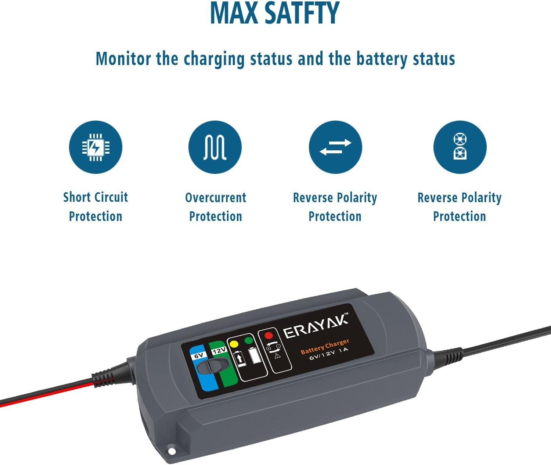 6//12 V 1A//6A 40Ah automobile Chargeur de batterie Erayak Tous les types de tondeuses /à gazon moto camping-car