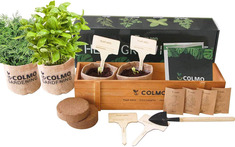 Indoor Herb Garden Kit COLMO Herb Garden Kits Kitchen Growing Starter Window Garden Growing Kit Kitchen Indoor Gardening Set