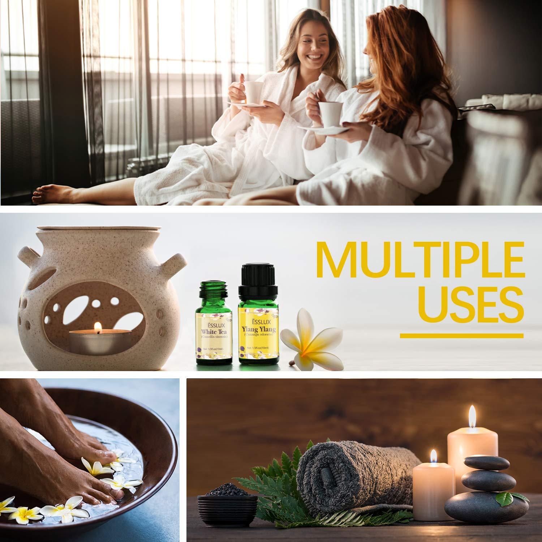 Pure Aromatherapy Diffuser Oils Set, Rose, Ylang Ylang, Jasmine, Cherry Blossom, White Tea, Gardenia