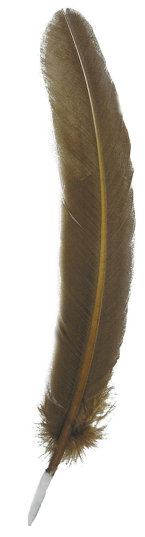 Herbin Plumes doie taill/ées 28cm Bronze