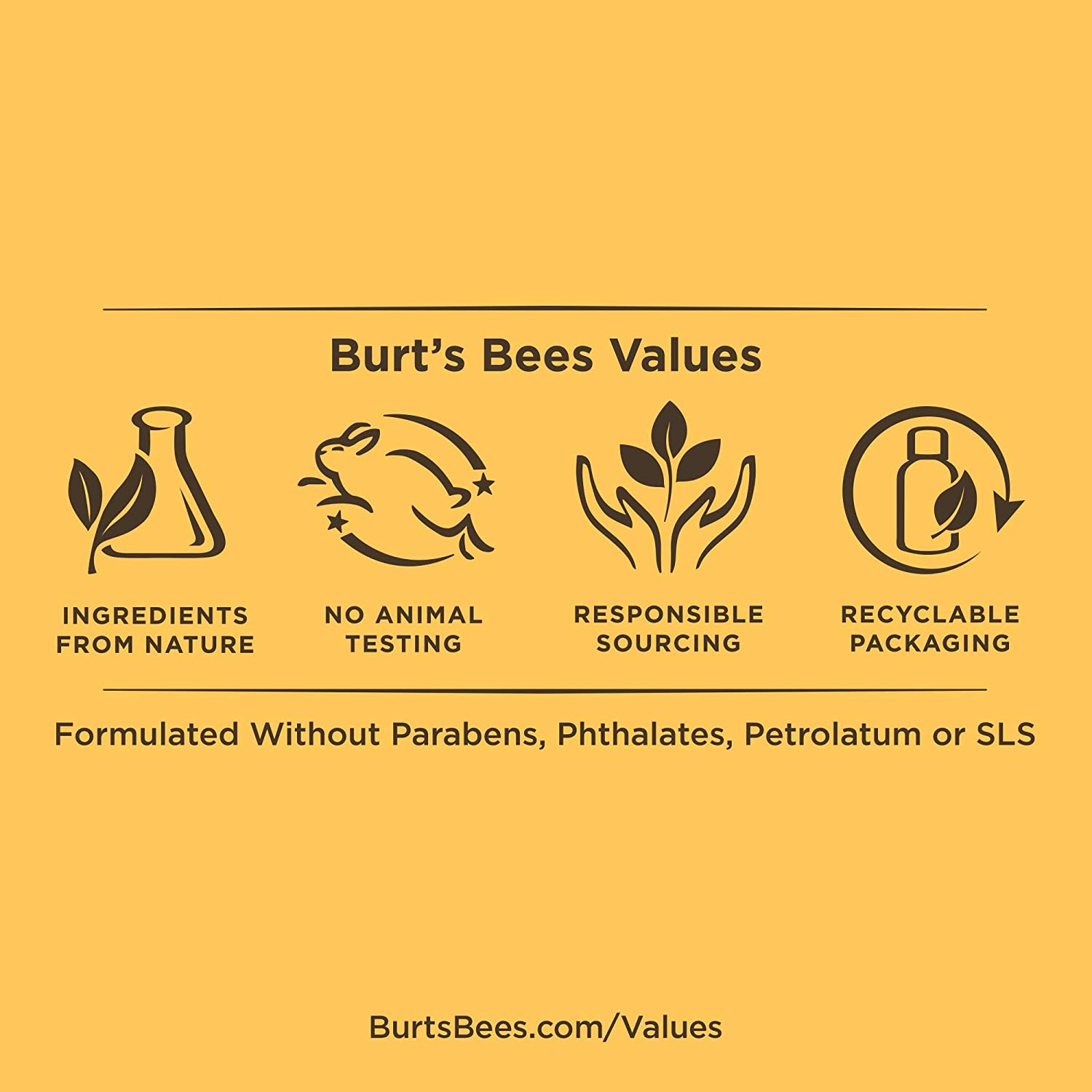 Burt's Bees Honey & Grapeseed Oil Hand Cream, 2.6 Oz (Package May Vary) : Hand Lotions : Beauty