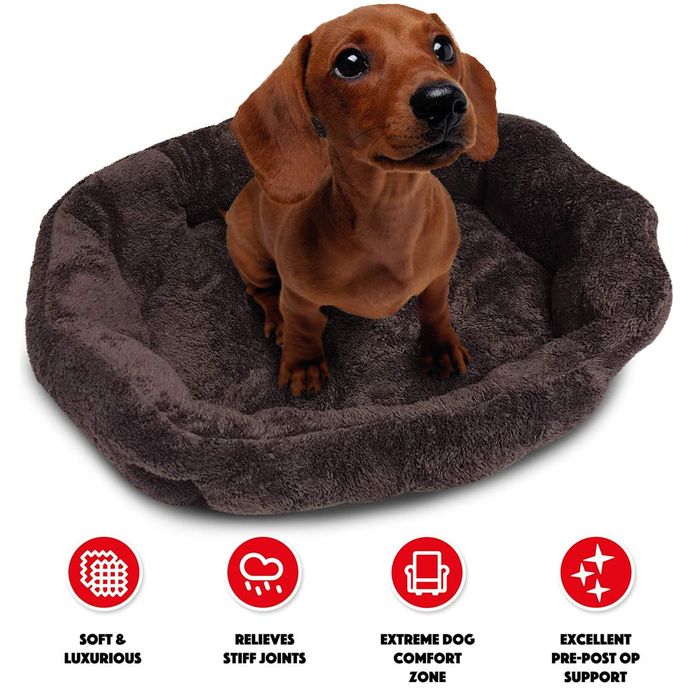 Dark Brown M-22\ Dark Brown M-22\ WarmShe Pet Dog Bed Sofa, Oval Faux Fur Pet Bed for Dogs & Cats Styles, 100% Cotton with Removable Mat (M-22 x18 x8.5 , Dark Brown)