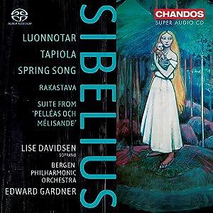 Sibelius - Poèmes symphoniques - Page 4 71N4hw916tS._SL300_