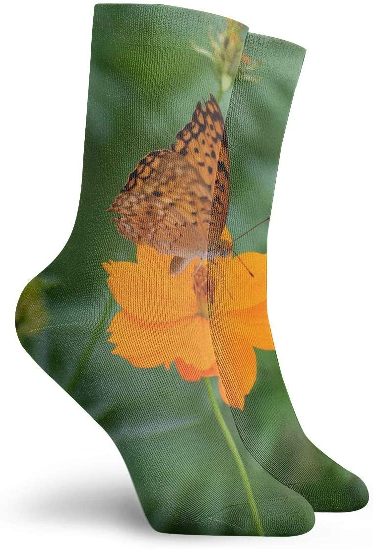 WEEDKEYCAT Yellow Flower Butterfly Insect Adult Short Socks Cotton Cozy Socks for Mens Womens Yoga Hiking Cycling Running Soccer Sports