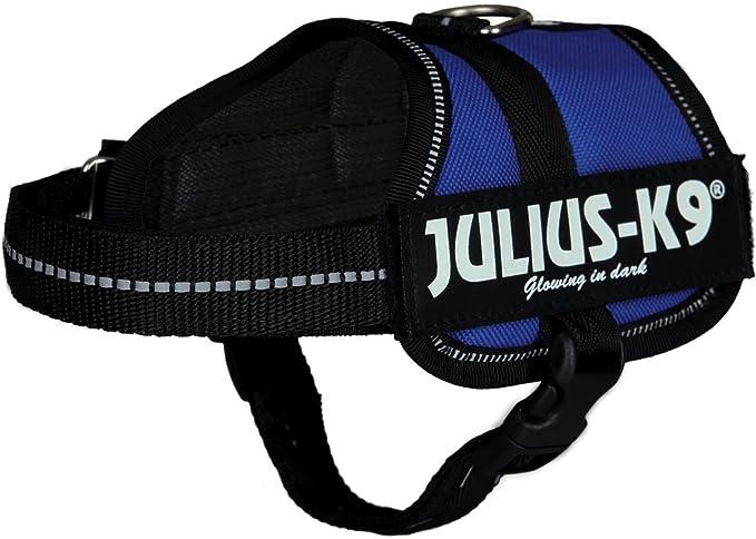 Trixie - Arnés modelo Julius-K9 para perro (Grande (L)/Azul ...