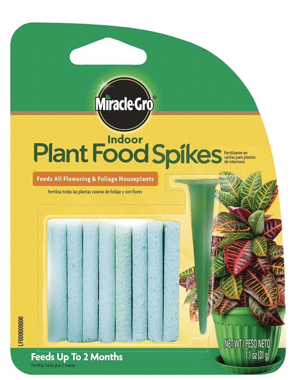 Amazon.com: Miracle-Gro 1002521 Planta de interior Spikes de ...