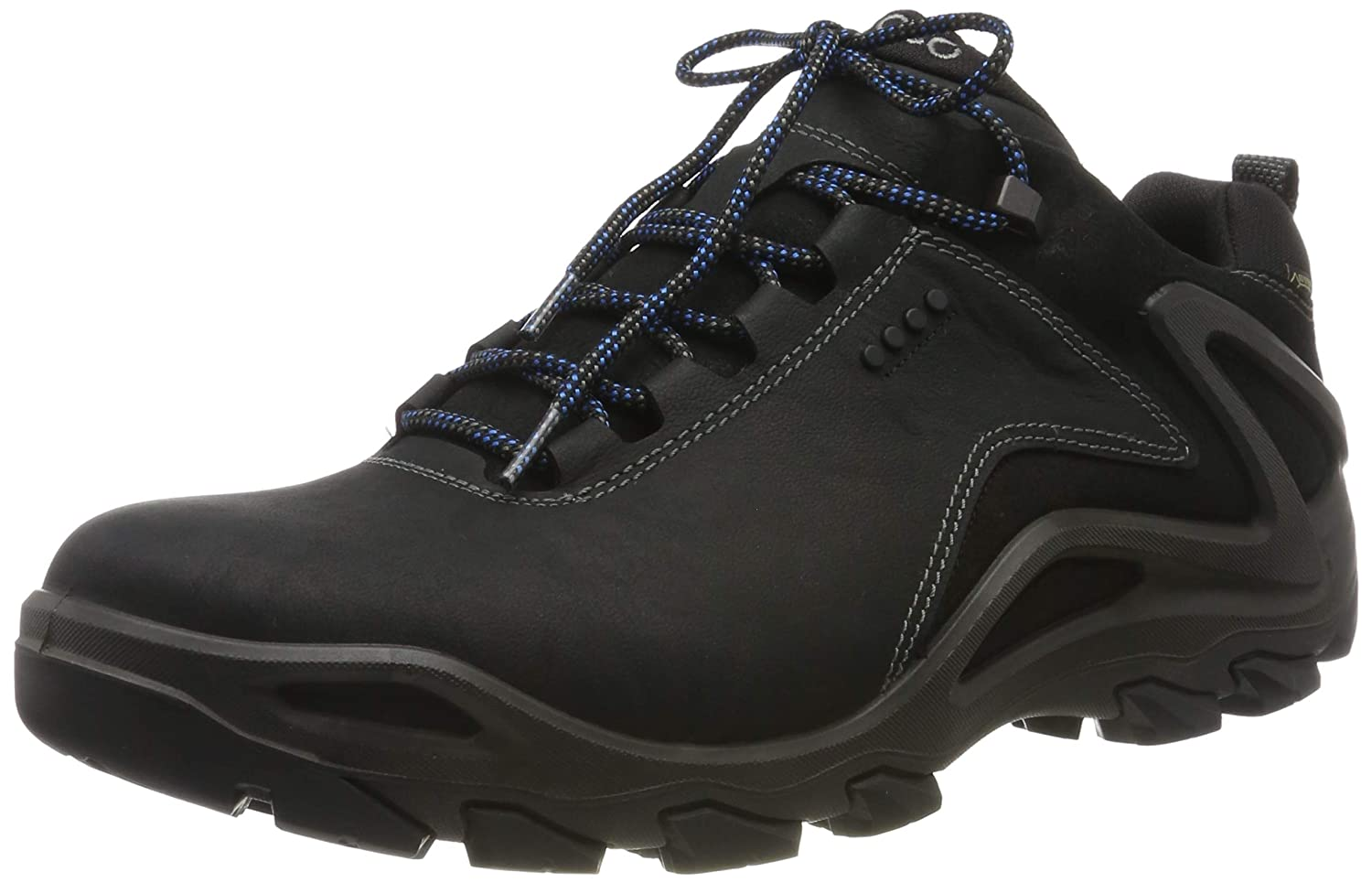 ECCO Men's Terra Evo Low Gore tex Hiking Shoe