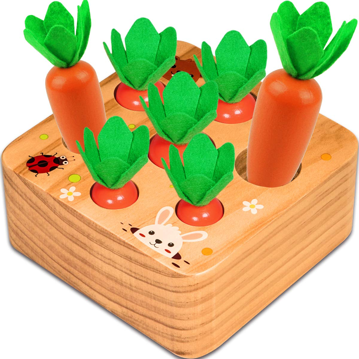 Aitbay Montessori Toys for 1 Year Old Toddlers, Carrots Harvest Shape Size Sorting Game Developmental Wooden Montessori Toys for Boy and Girl Age 1 Preschool Learning Fine Motor Skill