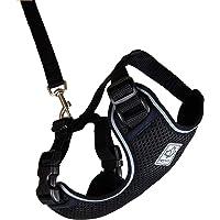 RC Pets Adventure Kitty Harness, Cat Walking Harness, Small, Black
