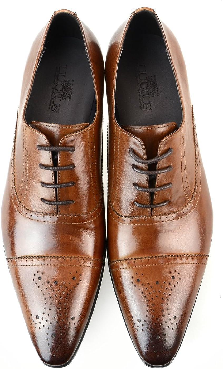 [ルシウス] ビジネスシューズ 革靴 メンズ 本革 レザー レースアップ ローファー スリッポン ダブルモンクストラップ 内羽根 ロングノーズ ドレスシューズ ストレートチップ プレーントゥ Uチップ 春 靴 D [ ZNX89B ] LLT79-1 ブラウン 26.5 cm