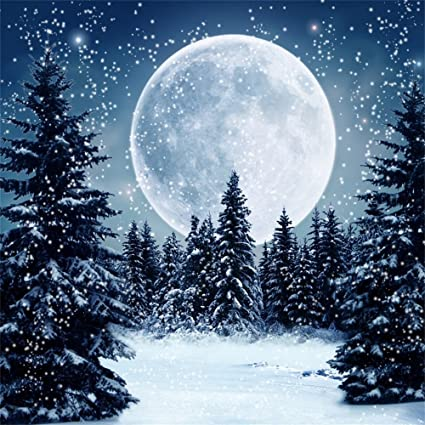Christmas Forest.Leowefowa 5x5ft Vinyl Snow Backdrop Christmas Tree Forest Shining Moon Night Gothic Falling Snowflakes Nature Winter Happy Year Photography Background