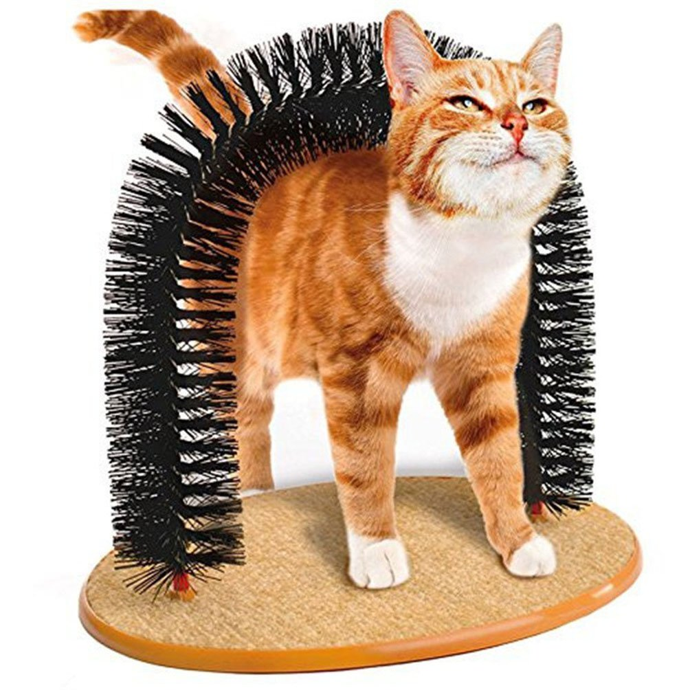 Amazon.com : PAPAIT Pet Cat Arch Self-Groomer and Massager - Groom ...