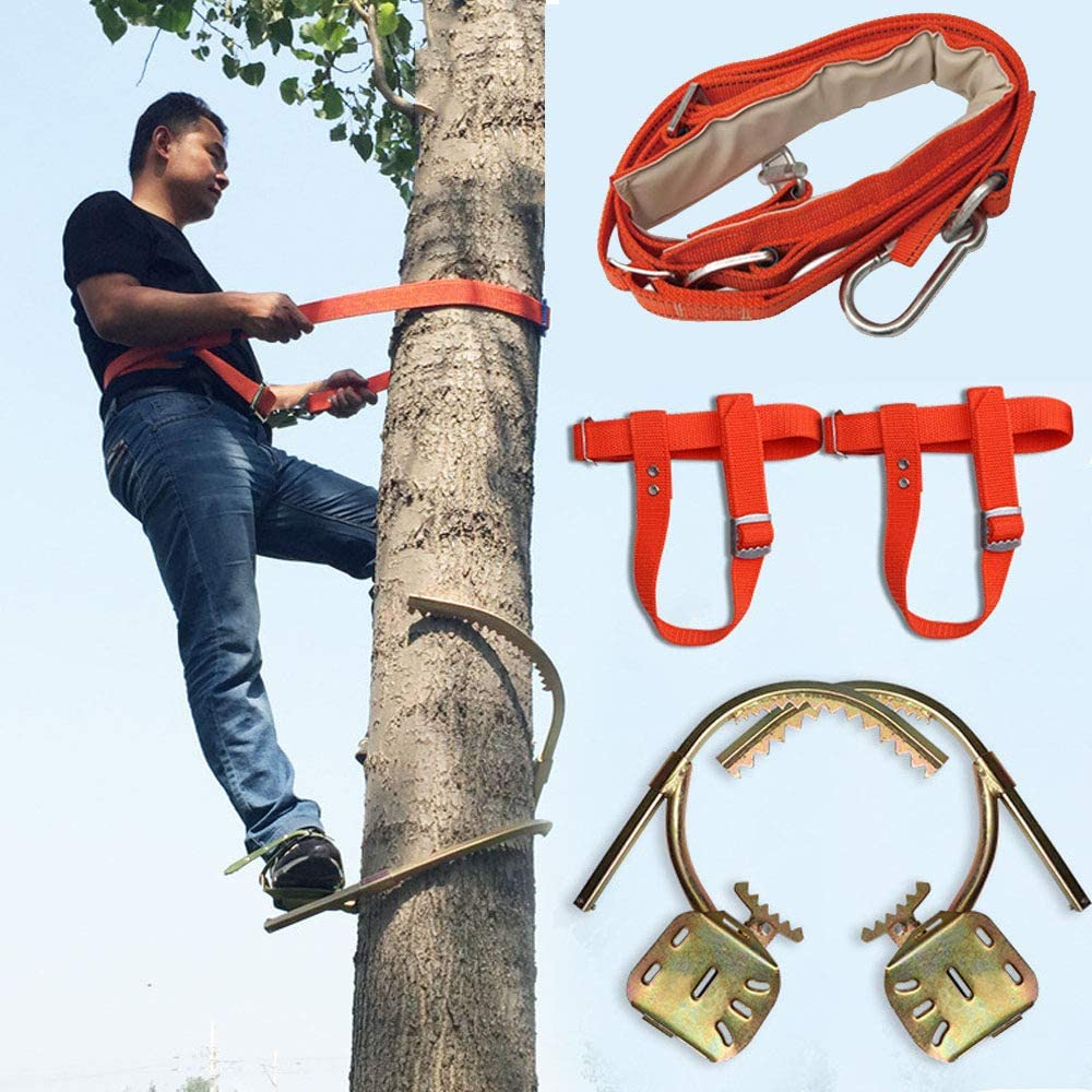 Artefacto de árboles de Escalada,Trepar árboles Zapatos de ...