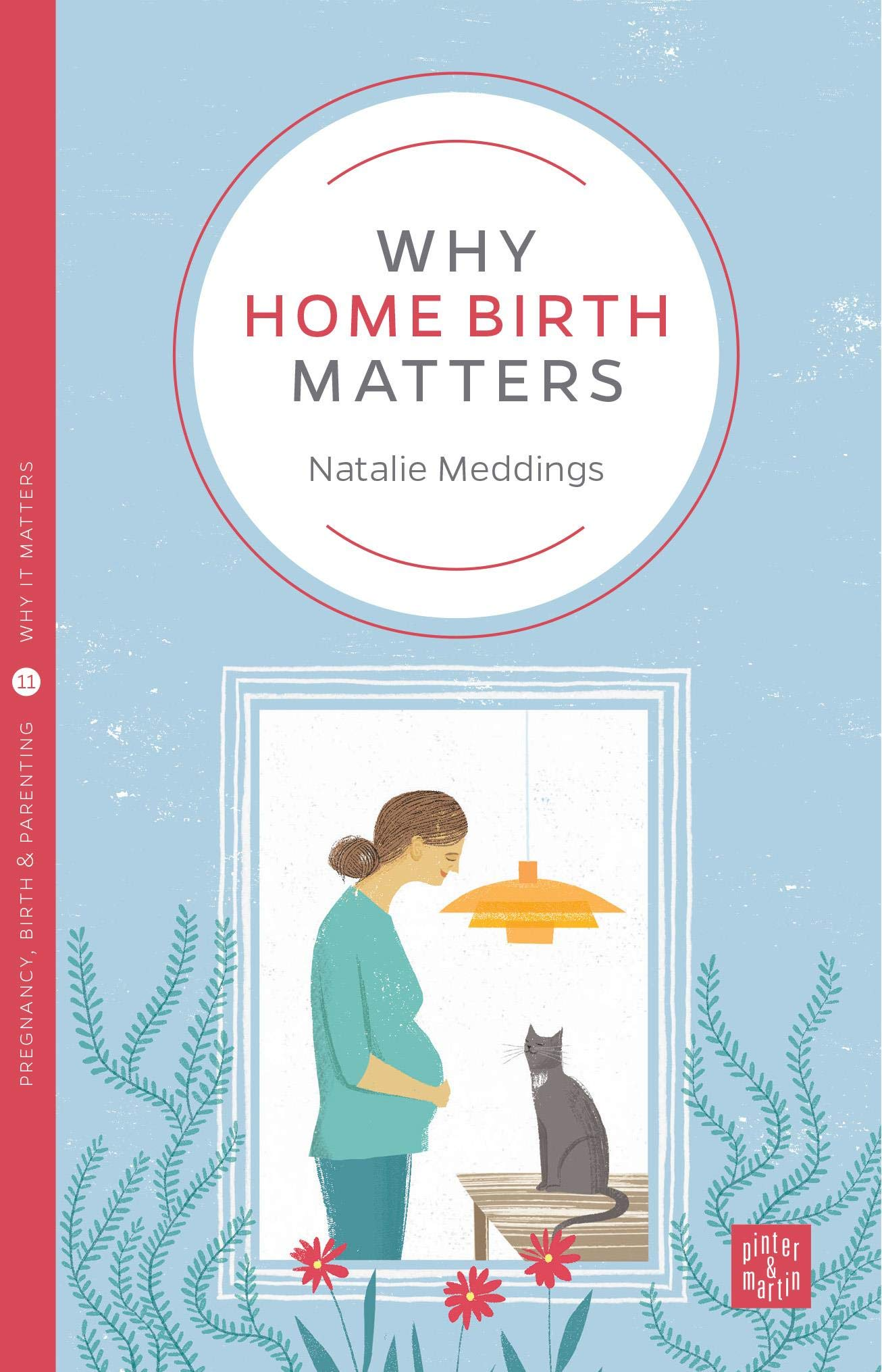Why Home Birth Matters (Pinter & Martin Why it Matters: 11): Amazon