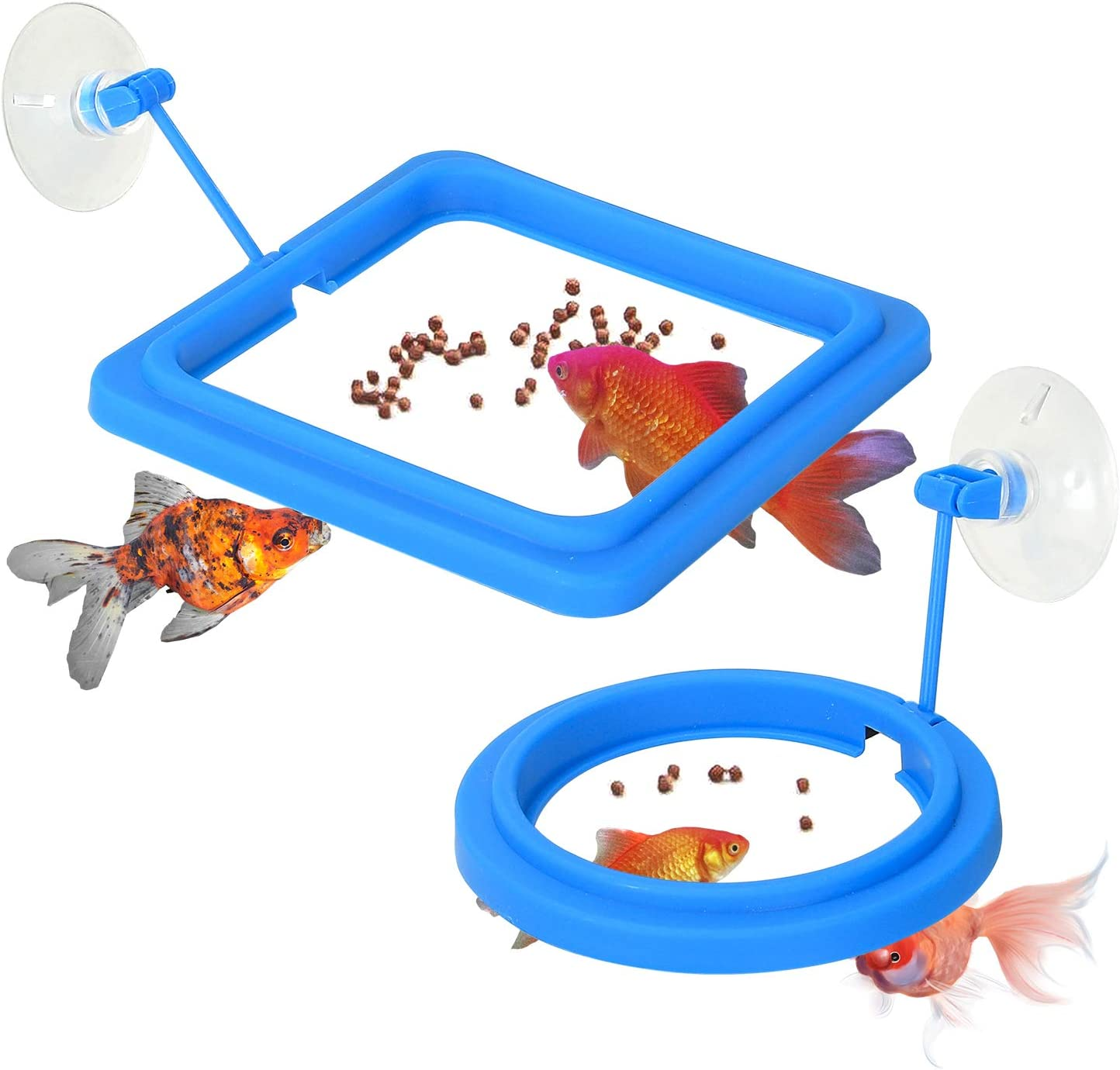 Sockeroos 2 Pcs Fish Feeding Ring, Floating Food Feeder Square & Round with Suction Cup, Easy to Install Aquarium, Suitable for Gordfish, Betta Fish, Guppy and More(Blue)