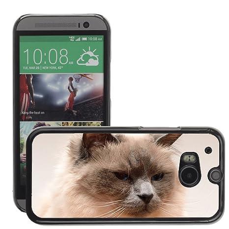 Cas Coq Case Cover // M00145582 La cara del gato del gato Cabeza Gato /