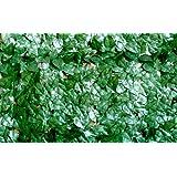 VERDELOOK, Siepe Sem/Verde Lauro M1 X 3