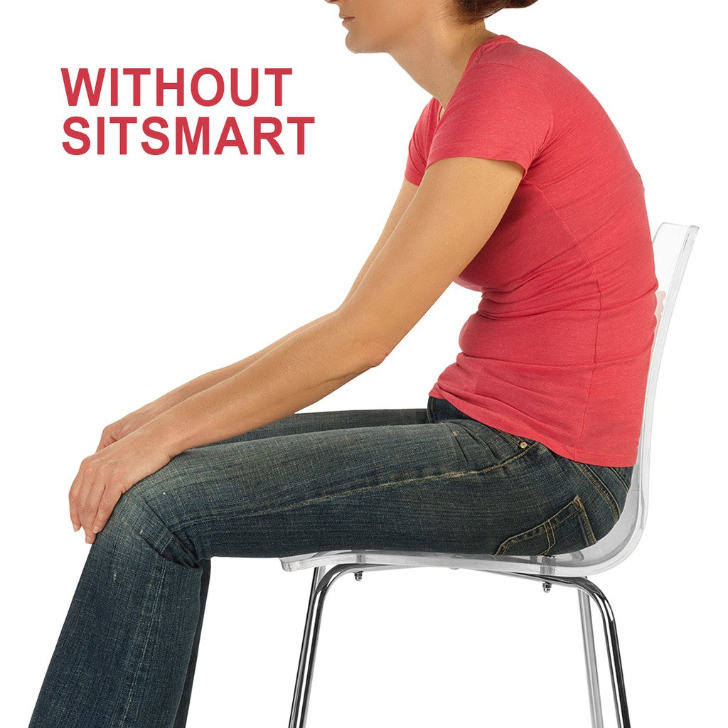 BackJoy SitSmart Fabric Posture Cushion | Lumbar Support for Car and Back Support by BackJoy (Image #5)
