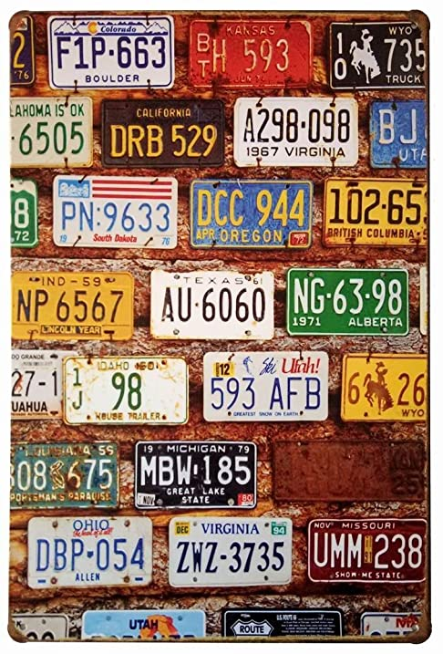 Amazon.com: ERLOOD License Plate Vintage Home Decor Wall Tin Sign 12 ...