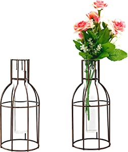 Glass Flower Vase with Metal Geometric Bracket-Crystal Transparent Plant Vase,Iron Art Planter Terrariums, Plant Pot Decor for Tabletop Display Home Living Room Office Wedding Holiday and Party Gifts