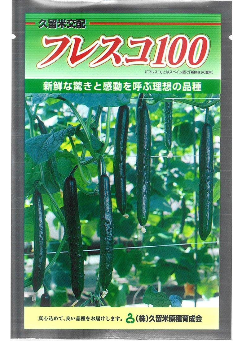 久育種苗 フレスコ100 (きゅうり) 350粒詰 [久留米原種育成会] B013226U42