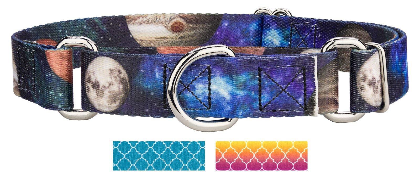 Country Brook Design Galactic Neighbors Martingale Dog Collar - Medium