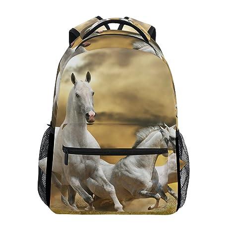 COOSUN Funcionamiento del caballo bolsa de hierba informal Escuela Mochila Mochila Viajes Multicolor