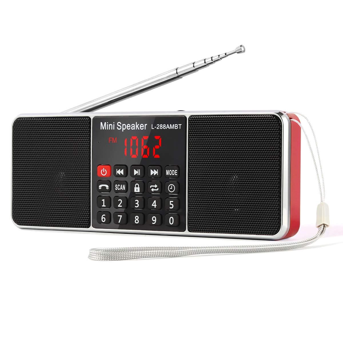 PRUNUS L-288 Portable AM/FM/Bluetooth/mp3/USB/SD/AUX Radio de Antena Larga con Altavoz magnético Doble, función de Temporizador de Apagado automático.