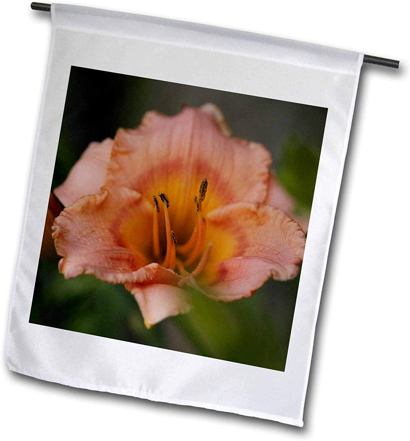 3dRose Stamp City - Flowers - Macro Photograph of a Single Orange Daylily in Full Bloom. - 12 x 18 inch Garden Flag (fl_319079_1)
