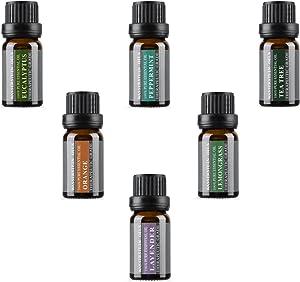 Top 6 Aromatherapy Oils 100% Pure Basic Essential Aromatherapy Oils Gift Set with Peppermint, Tea Tree, Lemongrass, Lavender, Orange, Eucalyptus Flavors (Top 6, 10ml)