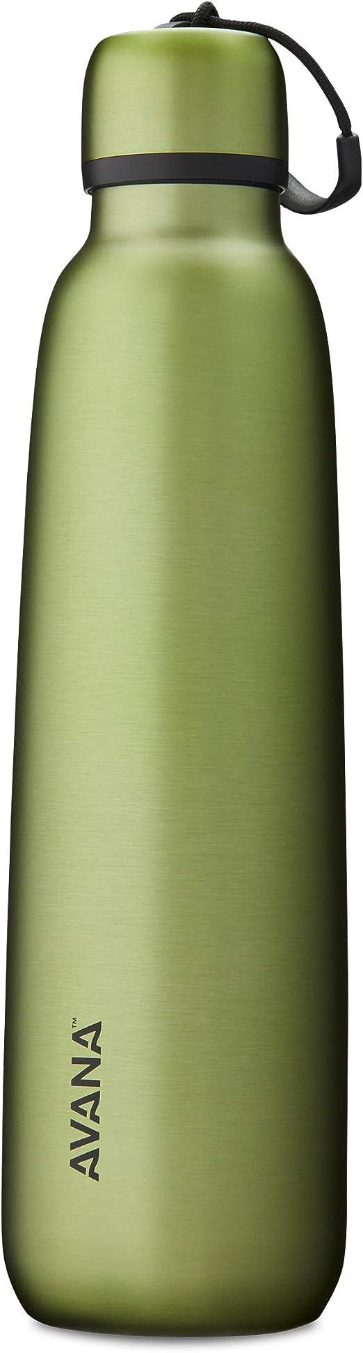 Avana Garrafa de água Ashbury de aço inoxidável com parede dupla, 680 g, palma: Amazon.com.br: Cozinha