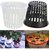 10 Hydrokultur Pflanzen Mesh Topf Net, woopower Kunststoff Hydrokultur Korb Flower Container Plant Grow Pot Cup, weiß, Free Size