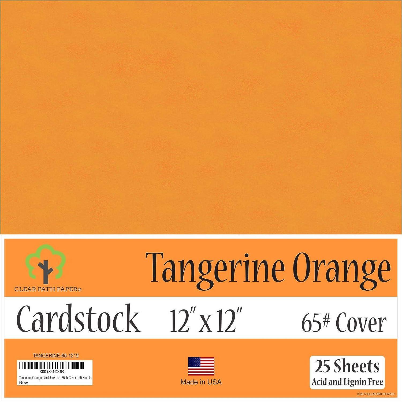 タンジェリン オレンジ カードストック - 12 x 12インチ - 65ポンド カバー - 25枚 12 x 12 Inch - 25 Sheets オレンジ TANGERINE-65-1212 B07JDPZLBT  12 x 12 Inch - 25 Sheets
