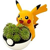 4.5'' Pikachu Planter Pot - Great for Succulents, House Plants, Echeveria, Jade Plant | Small Size 11.5cm Tall Mini…